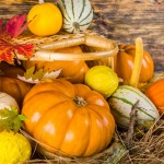 Harvest festival service 7th October 2O18