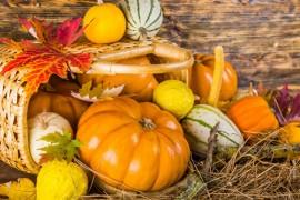 Harvest festival service 7th October 2O18